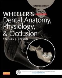 دانلود رایگان کتاب فیزیولوژی، اکلوژن و آناتومی دندان ویلر- ِWheeler's Dental Anatomy, Physiology and Occlusion, 10 ED(رایگان)