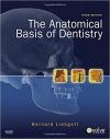 دانلود کتاب آناتومی پایه برای دندانپزشکی The Anatomical Basis of Dentistry 3ED