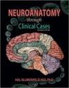 دانلود کتاب آناتومی مغز و اعصاب از طریق موارد بالینیNeuroanatomy through Clinical Cases 2ED